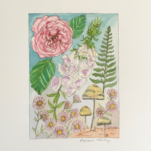 Roses and Ferns