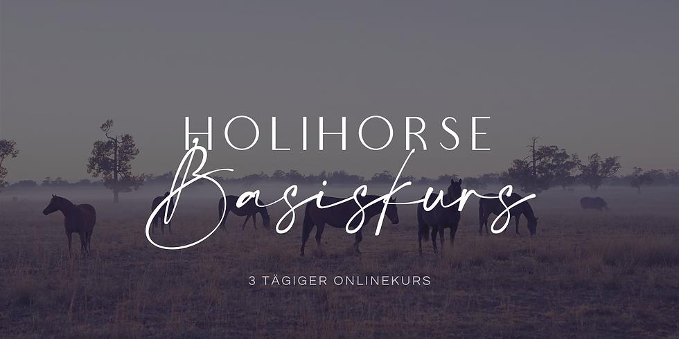 HOLIHORSE Basiskurs