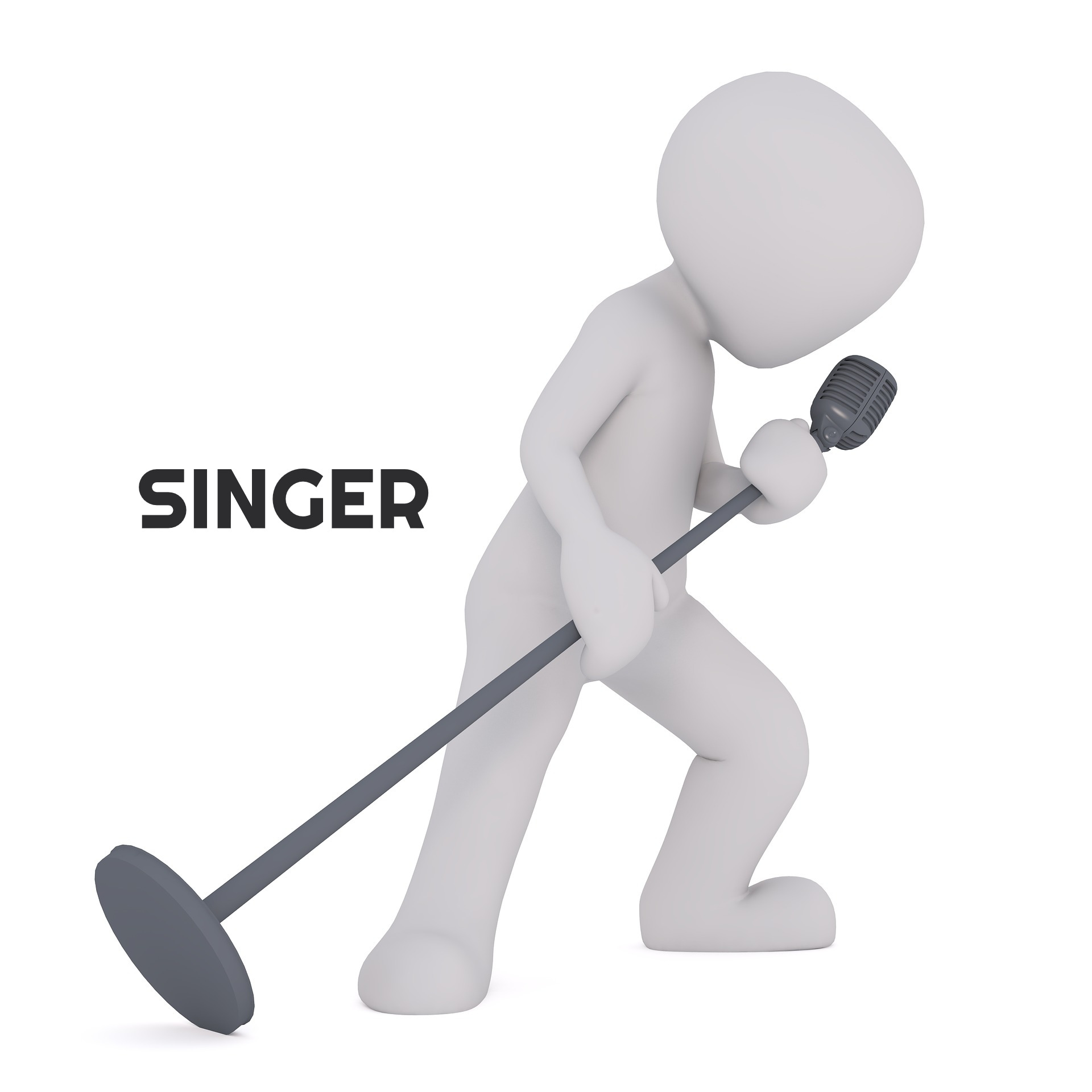 singer-1825685_1920_edited