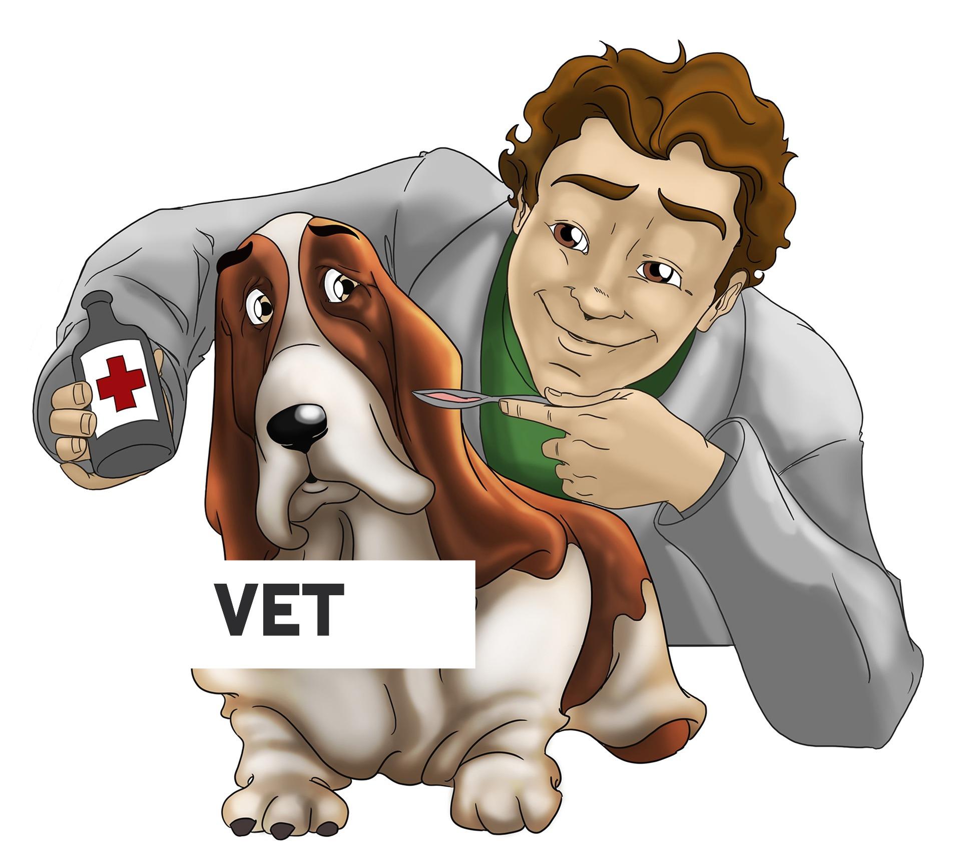 veterinary-1529191_1920_edited