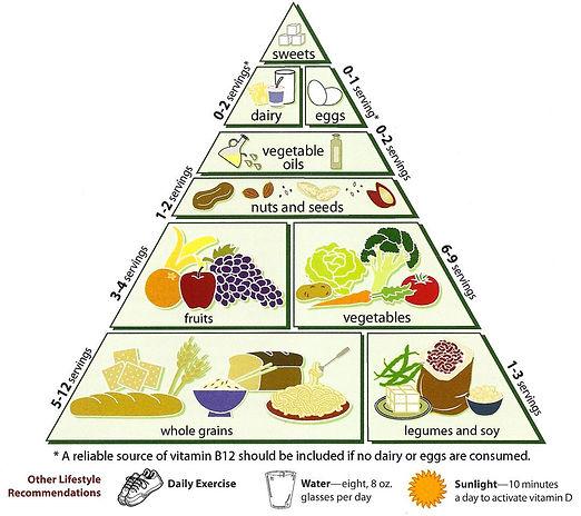 progetto clil sull'alimentazione, la piramide alimentare in inglese