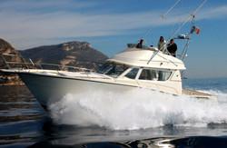 Private Boat trip