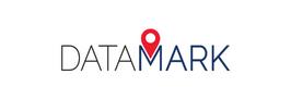 DataMark sized logo.png