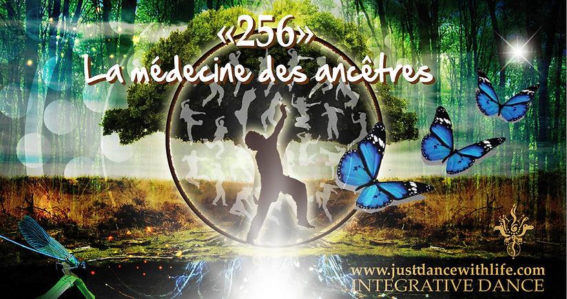 256_-_La_medecine_des_ancêtres.jpg