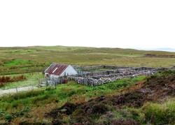 místo na stříhání ovcí