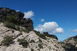 Cesta do Tossals verds