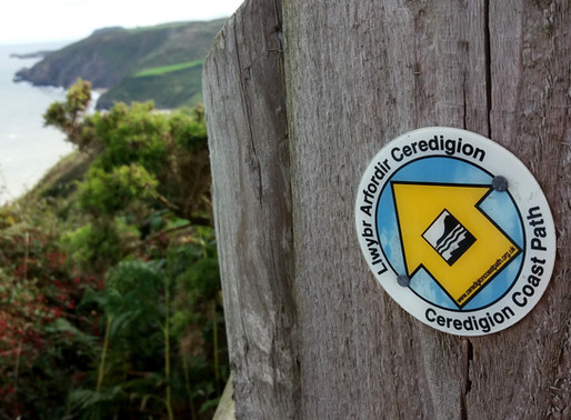 Wales, Ceredigion 6