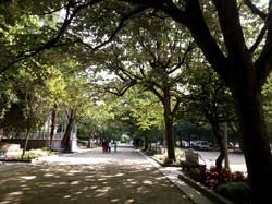 V Santiagu
