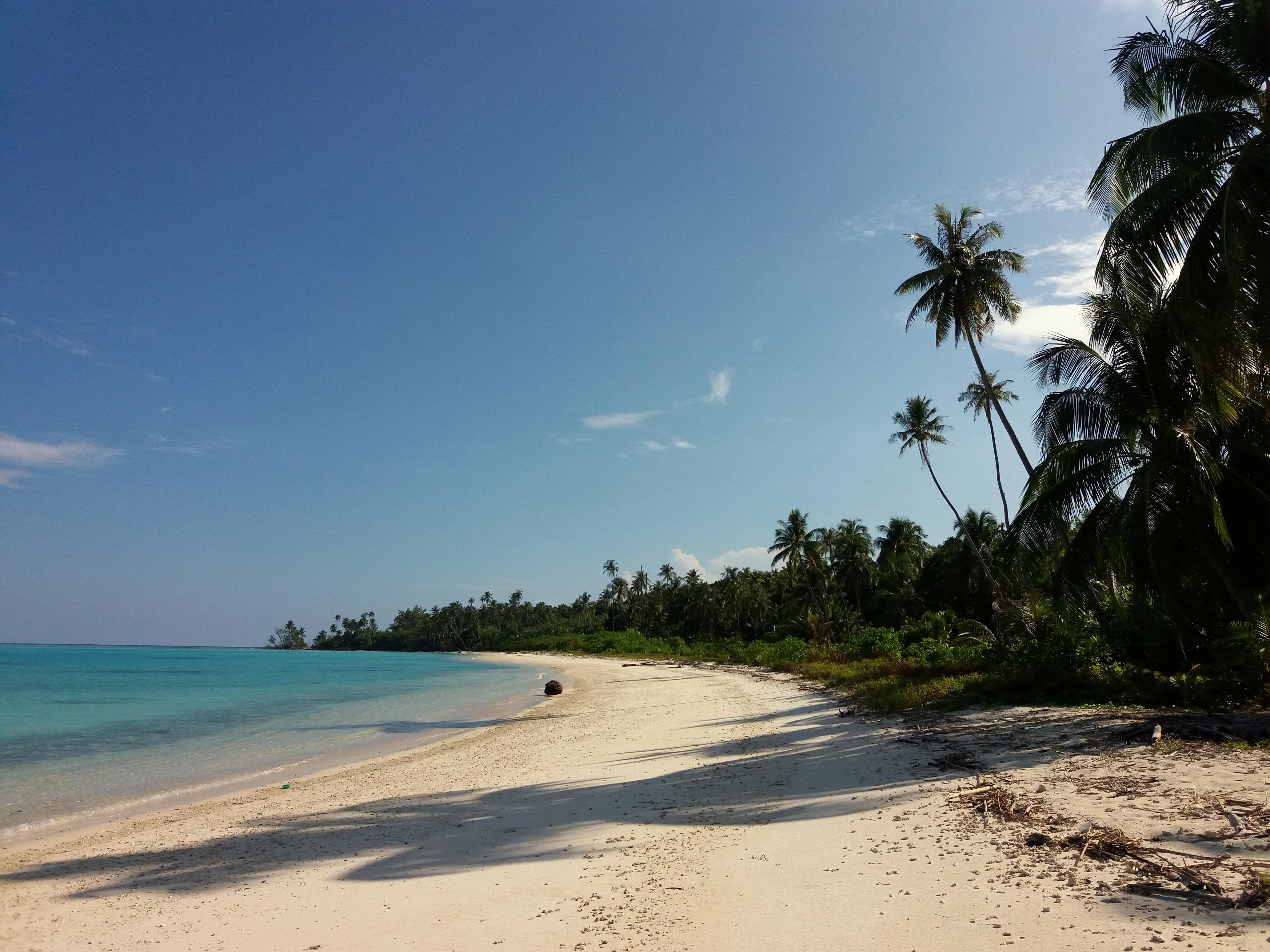 Ostrov Palambak