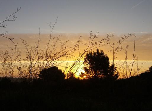 GR 223, Menorca 4.