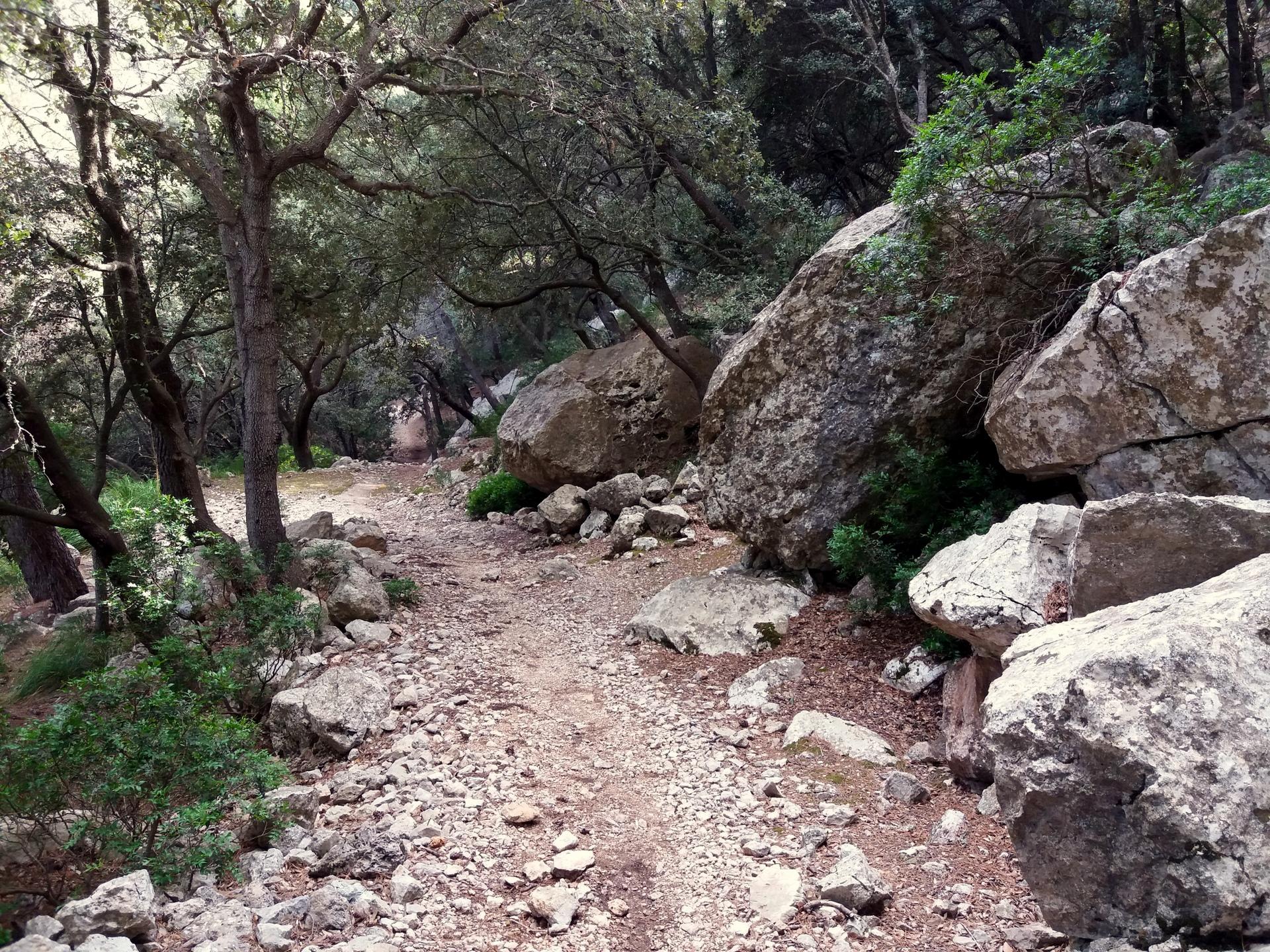 cestou pod Puig Galatzo