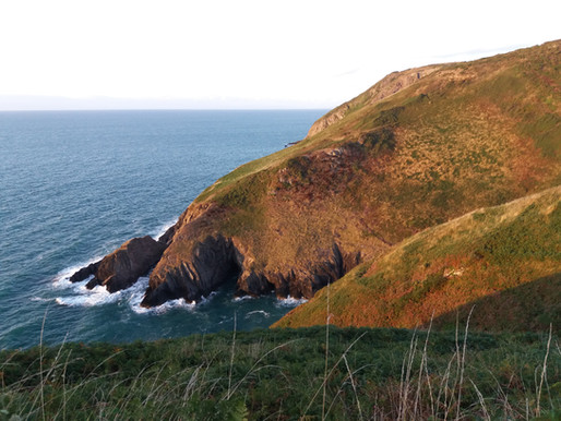 Wales, Pembrokeshire a Ceredigion 5