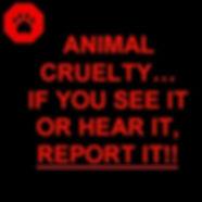 Help stop animal cruelty