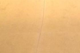 "Skatelite ""4 x 8"" Pro (Tan)"