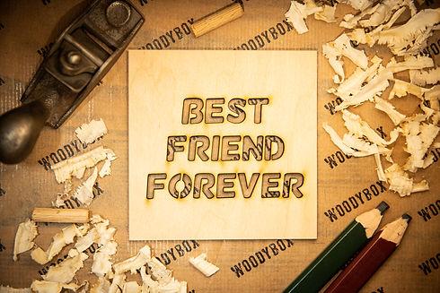 best friend forever.jpg