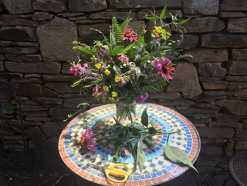 Fresh local flower arrangement in a vase. Flowers include pink coneflowers, sweet peas, lavender and green ferns, pods and vines.