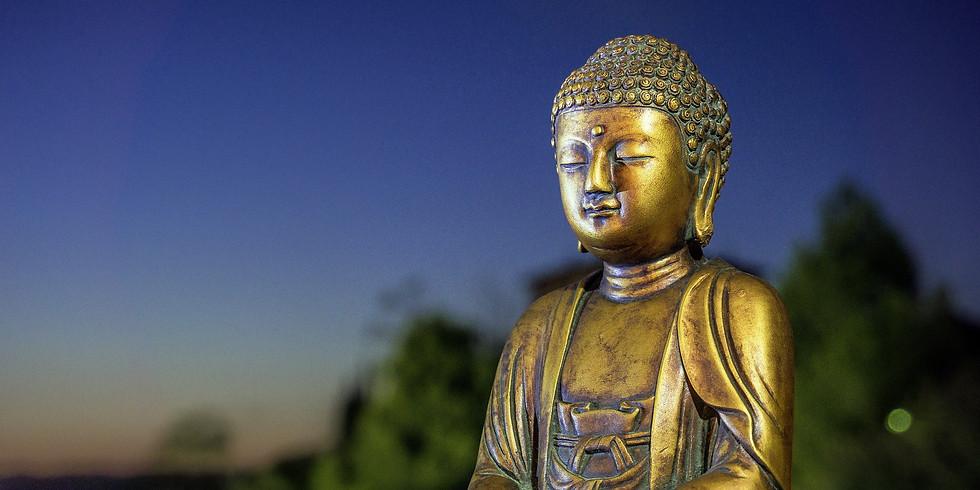 Yoga und Meditation (Anfänger herzlich willkommen)