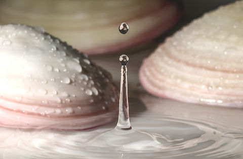 Water drop in front of shells for lavashell massage_edited.jpg