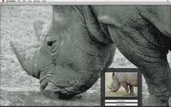 sketchmee_mac_screenshot_normal_2.png