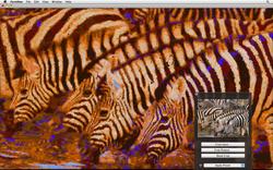 Screen shot 2011-04-30 at 10.25.35.png