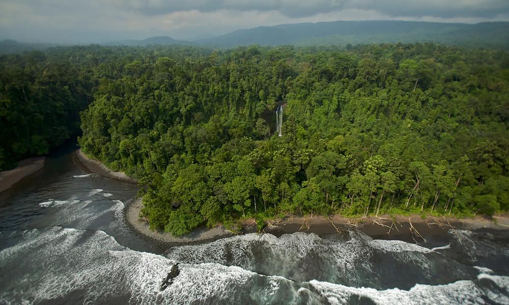 Isla de Bioko, Guinea Ecuatorial. En gran parte de África occidental, la cubierta forestal aumentó en el curso del siglo XX.