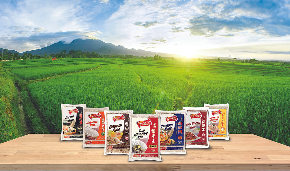 PaddyKing Paddy Field with Full range of Rice Products