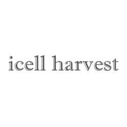 icell Harvest Logo.jpg