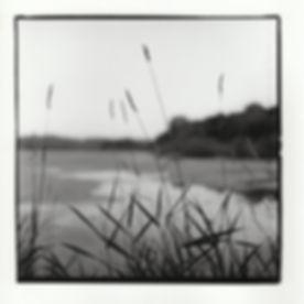 """""""Trempealeau ,"""" Silver Gelatin Print, 2017"""