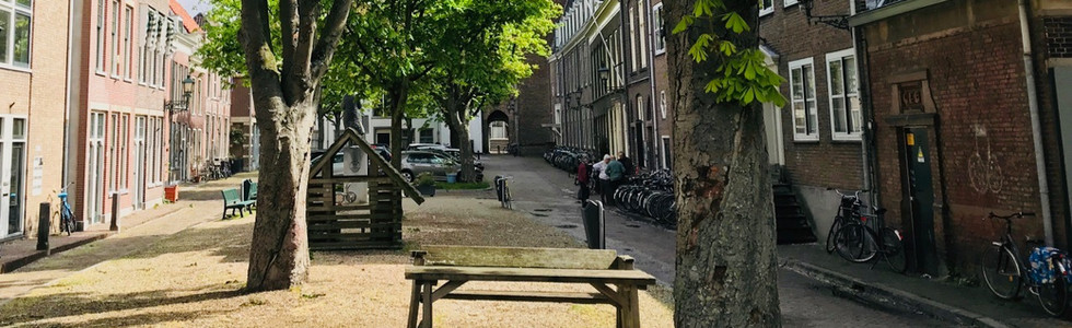 Bagijnhof, Delft