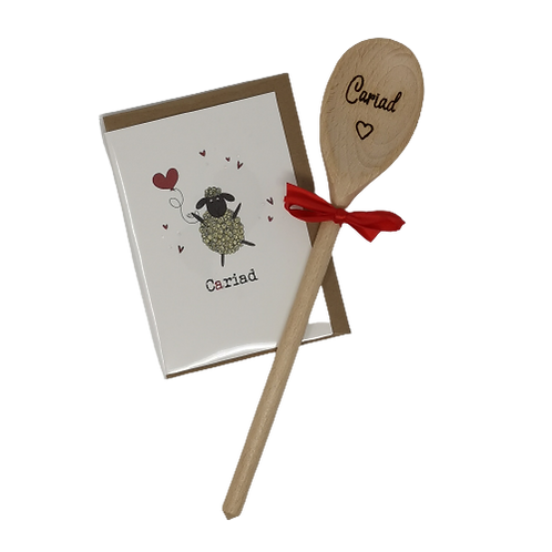 Cariad Spoon & Card Gift