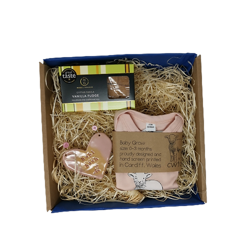 New Baby/Baby Shower Pink Gift Set