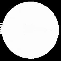 315kids logo white.png