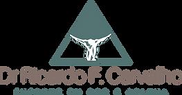 logo 2019 - RICARDO.png