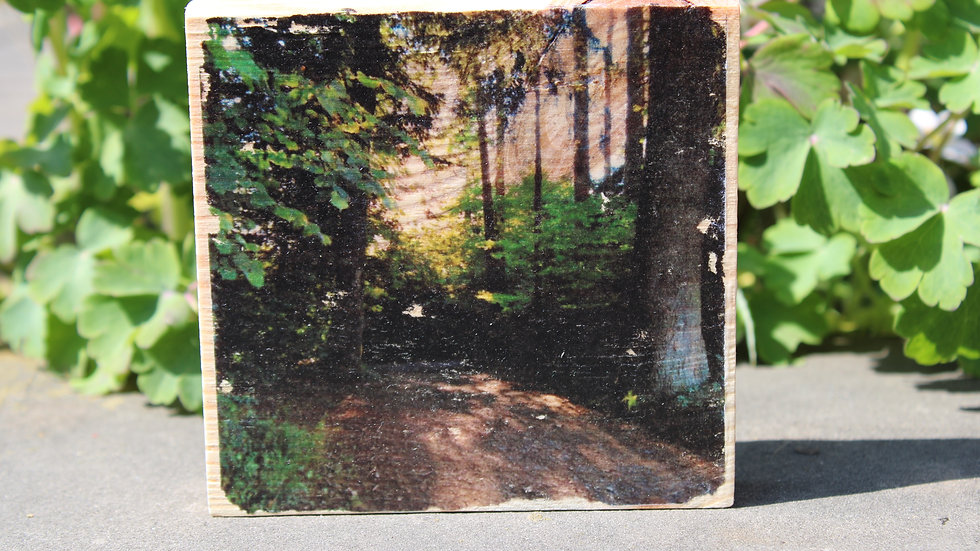 Holzbild Wald