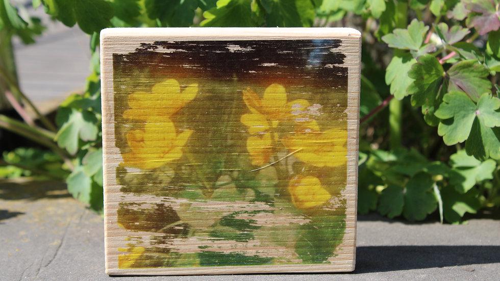 Holzbild Dotterblumen
