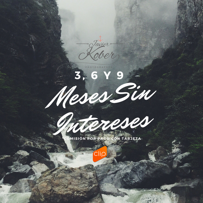 MESES SIN INTERESES