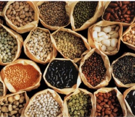 Ideas for beans & roasted garbanzo bean recipe (vegan)