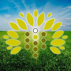 refua-logo-spiritual-medicine.jpg