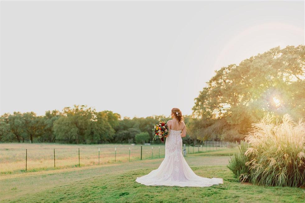 bride%20in%20field_edited.jpg