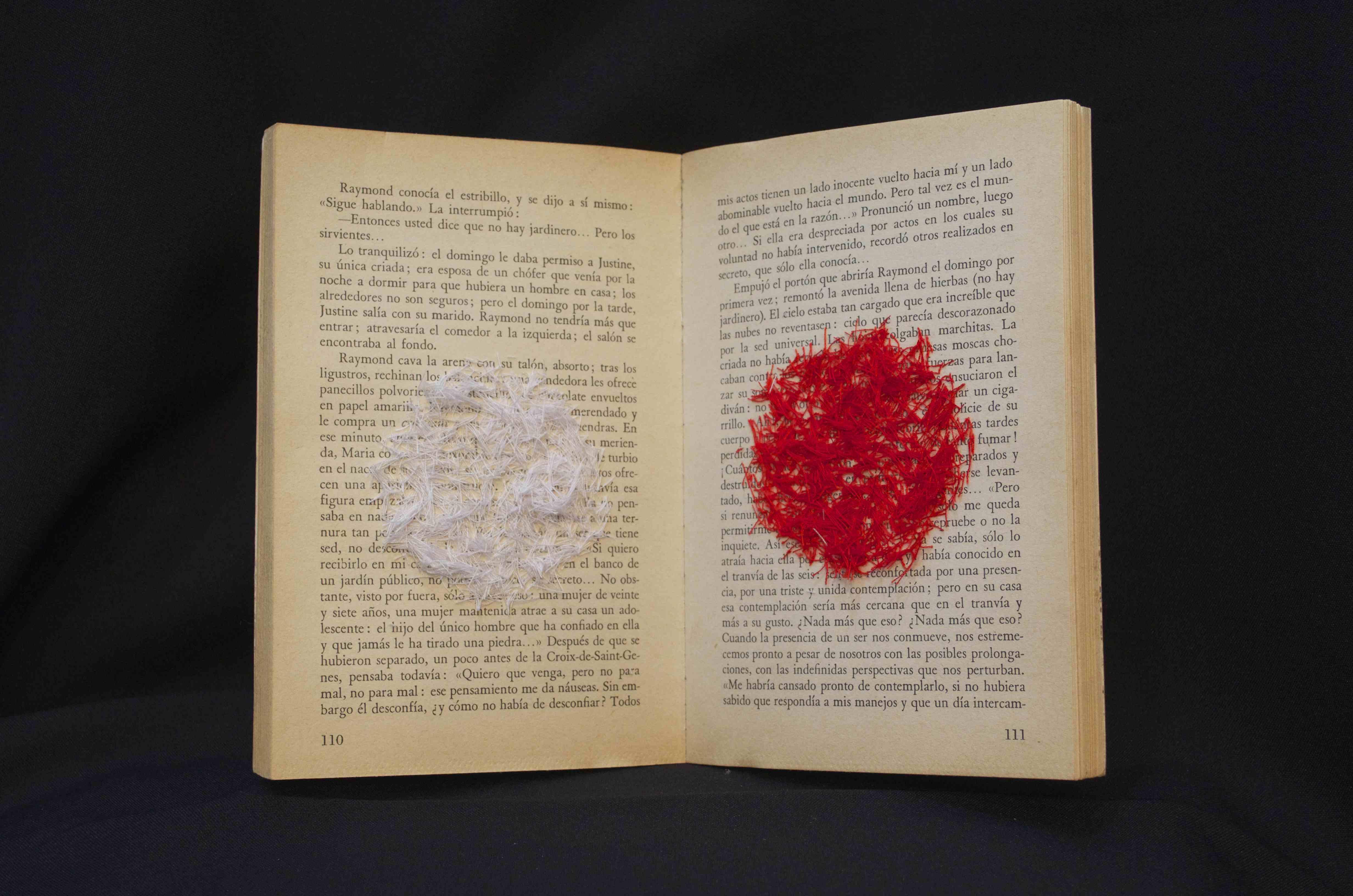 """De la serie """"Libros Imposibles"""""""