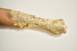 Gold mine Series