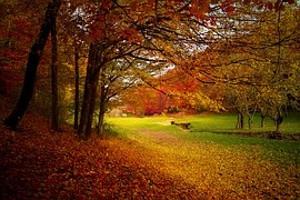 automne-abc