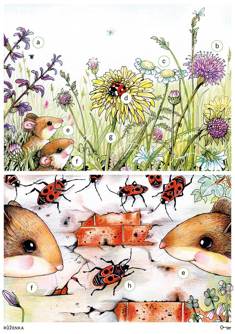 Příběhy ze staré zahrady (didaktické karty)