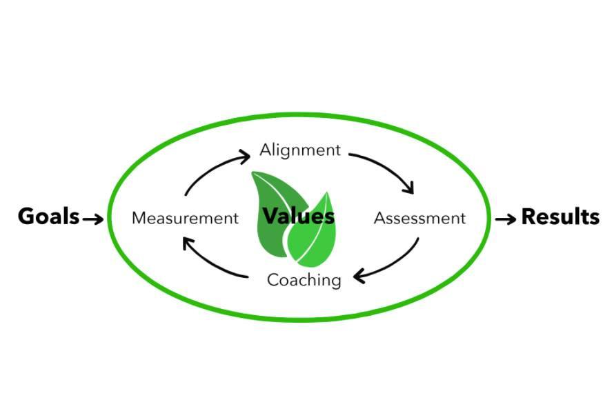 Typical executive coaching process