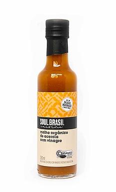 Molho Acerola com Vinagre Orgânico Soul Brasil  250ml