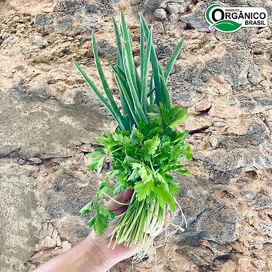 Cheiro verde Orgânico - Un