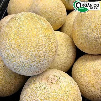 Melão Cantaloupe Orgânico 1kg - 1,5kg