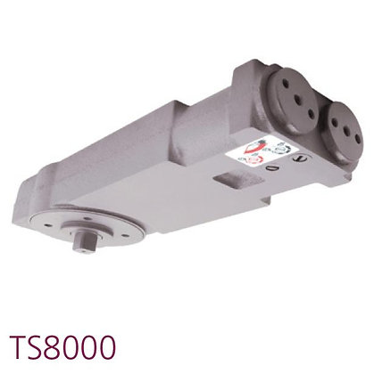 TS.8003NHO.SLA Concealed Transom Closer With Side Load Arm
