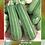 Thumbnail: Calabaza Larga Grey Zucchini