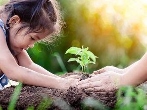 plantando planta.jpg